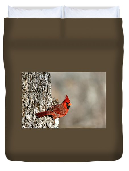 Northern Cardinal On Tree Duvet Cover