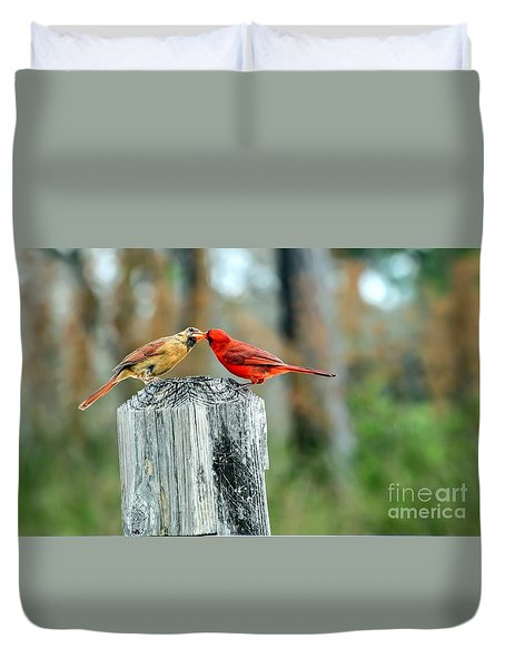 Northern Cardinal Pair Duvet Cover by Debbie Green