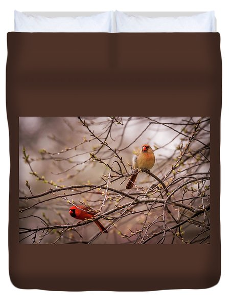 Northern Cardinal Pair In Spring Duvet Cover by Terry DeLuco
