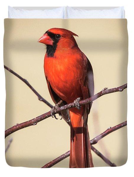 Northern Cardinal Profile Duvet Cover