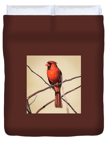 Northern Cardinal Profile Duvet Cover by Ricky L Jones