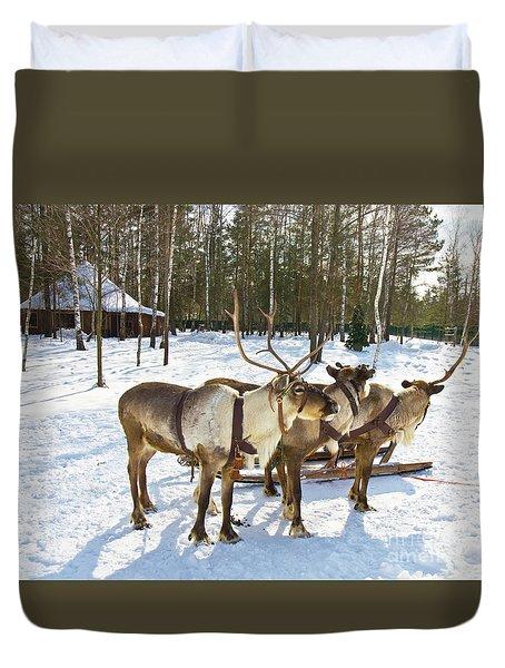 Northern Deers Duvet Cover by Irina Afonskaya