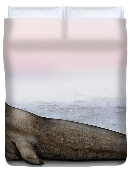Duvet Cover featuring the painting Northern Elephant Seal Mirounga Angustirostris Male - Marine Mammal - Seeelefant by Urft Valley Art
