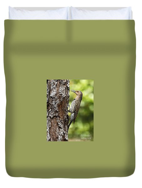 Northern Flicker On The Hunt Duvet Cover