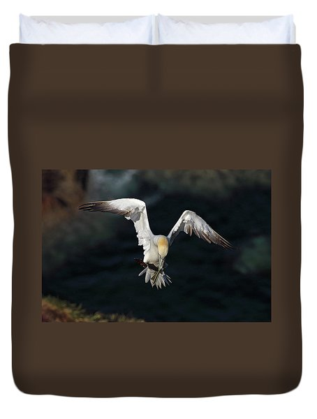 Duvet Cover featuring the photograph Northern Gannet In Flight 2 by Grant Glendinning