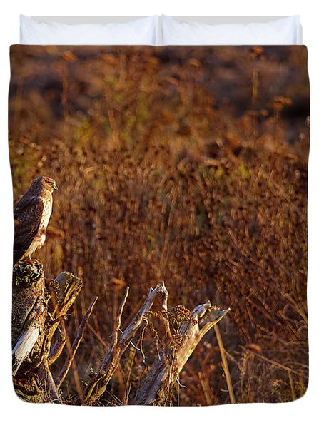 Duvet Cover featuring the photograph Northern Harrier At Sunset by Sharon Talson