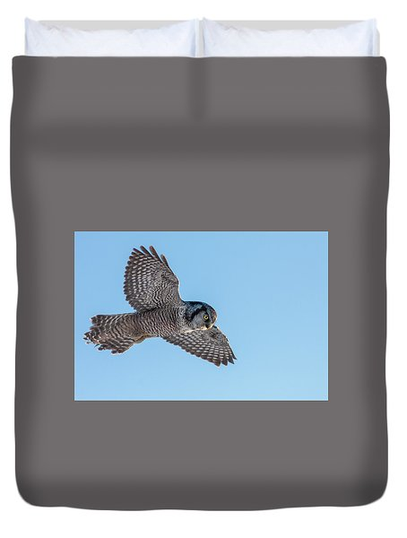 Duvet Cover featuring the photograph Northern Hawk Owl Hunting by Mircea Costina Photography