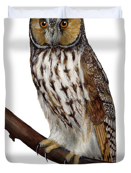 Northern Long-eared Owl Asio Otus - Hibou Moyen-duc - Buho Chico - Hornuggla - Nationalpark Eifel Duvet Cover