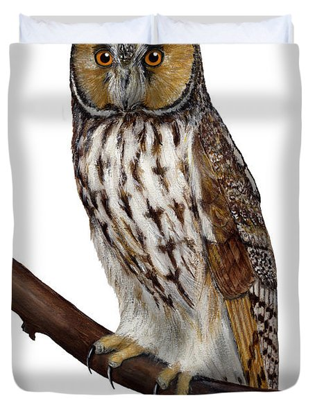 Northern Long-eared Owl Asio Otus - Hibou Moyen-duc - Buho Chico - Hornuggla - Nationalpark Eifel Duvet Cover