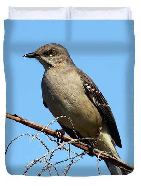Northern Mockingbird Duvet Cover by Bruce J Robinson