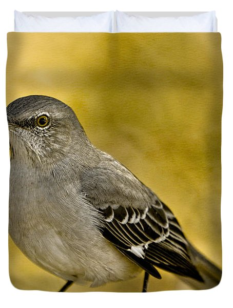 Northern Mockingbird Duvet Cover by Chris Lord