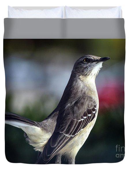 Northern Mockingbird Up Close Duvet Cover
