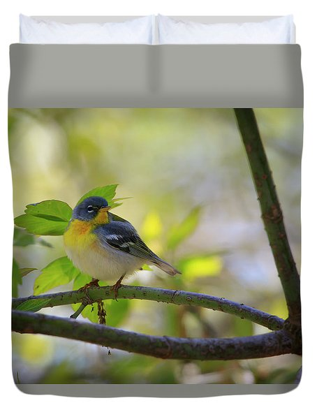 Northern Parula Duvet Cover by Gary Hall