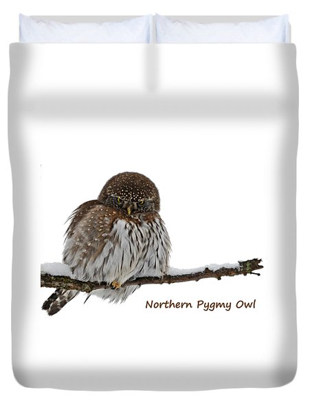 Northern Pygmy Owl 2 Duvet Cover