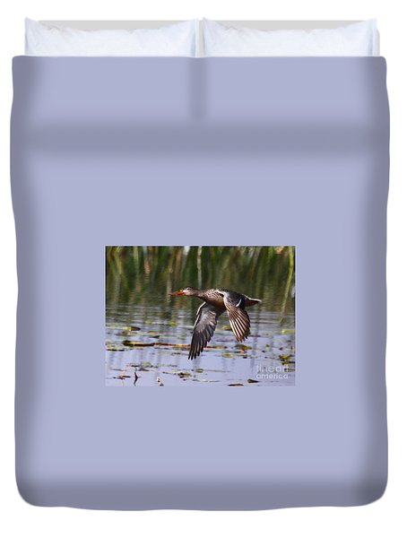 Duvet Cover featuring the photograph Northern Shoveler In Flight by Myrna Bradshaw