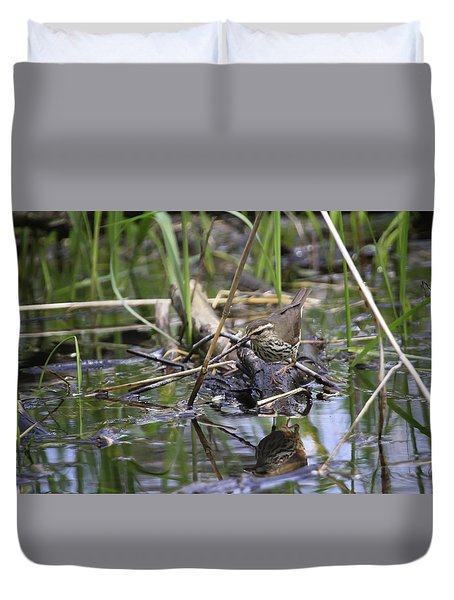 Northern Waterthrush Duvet Cover by Gary Hall