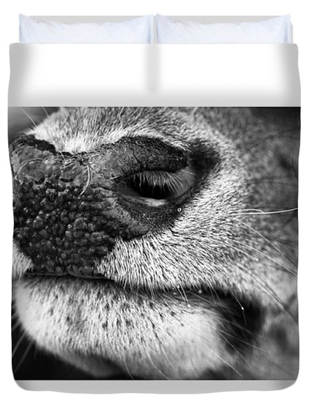 Nosy Nose  #monochrome #canon Duvet Cover