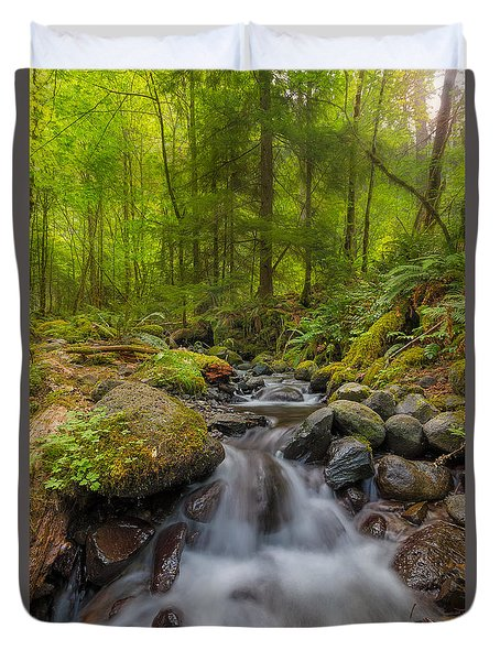 Not-so-dry Creek Duvet Cover by David Gn