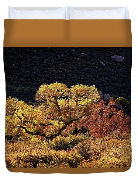 November In Arizona Duvet Cover