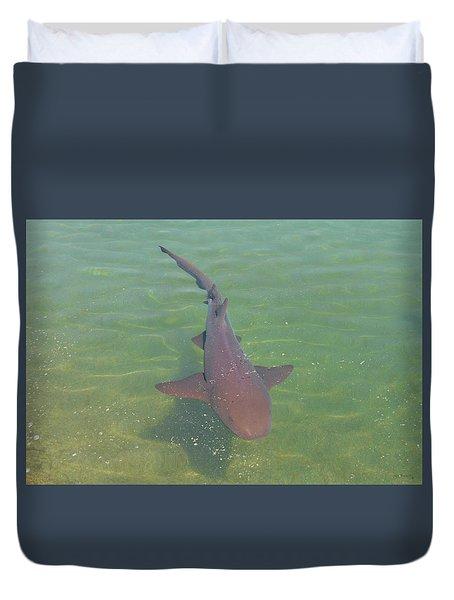 Nurse Shark Duvet Cover