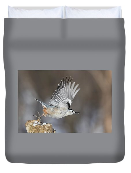 Duvet Cover featuring the photograph Nuthatch In Action by Mircea Costina Photography