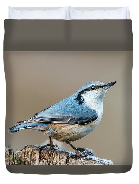 Nuthatch's Pose Duvet Cover by Torbjorn Swenelius