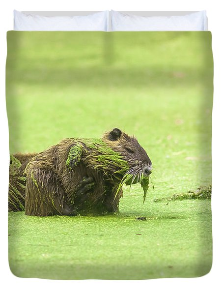Duvet Cover featuring the photograph Nutria In A Pesto Sauce by Robert Frederick