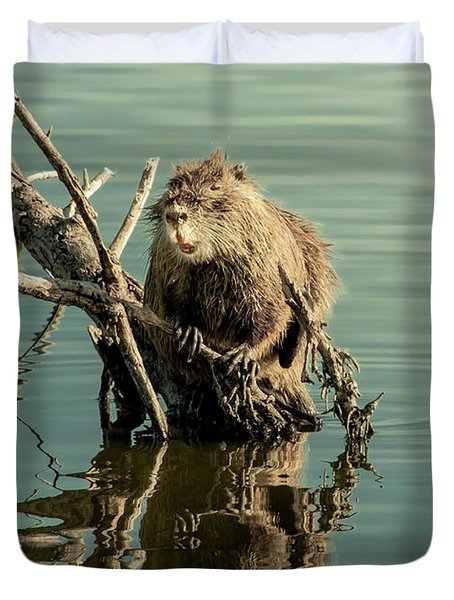 Duvet Cover featuring the photograph Nutria On Stick-up by Robert Frederick