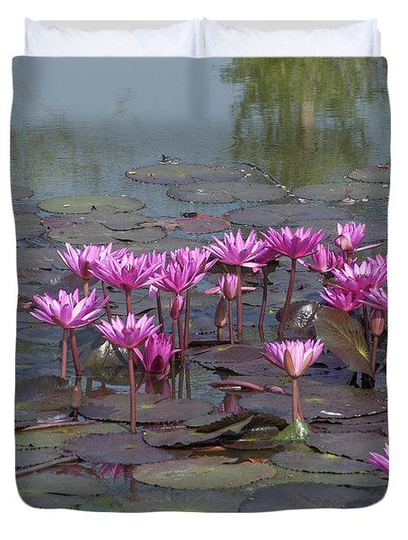 Nymphaea Water Lily Dthst0079 Duvet Cover
