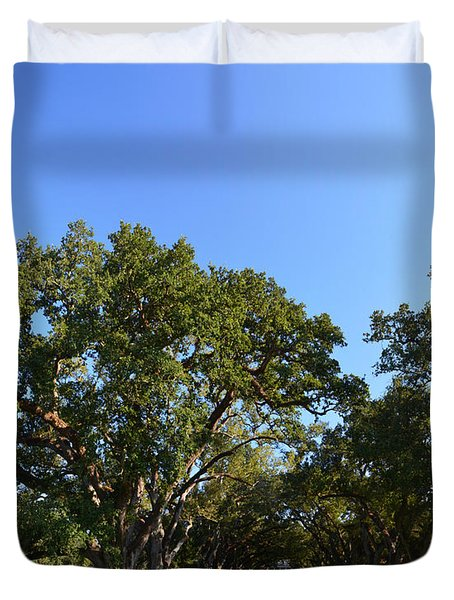 Oak Alley Plantation Panoramic Duvet Cover by Maggy Marsh