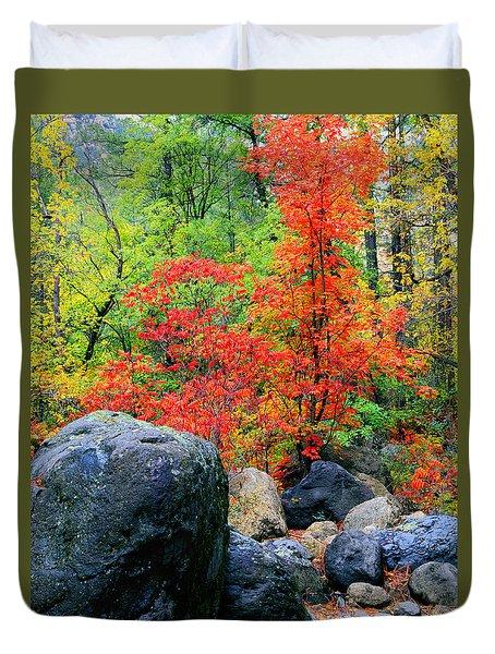 Oak Creek Canyon Red Duvet Cover