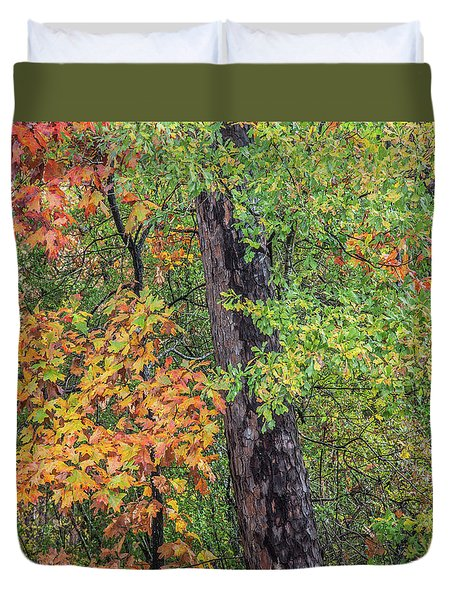 Oak Hickory Woodland Duvet Cover by Tim Fitzharris