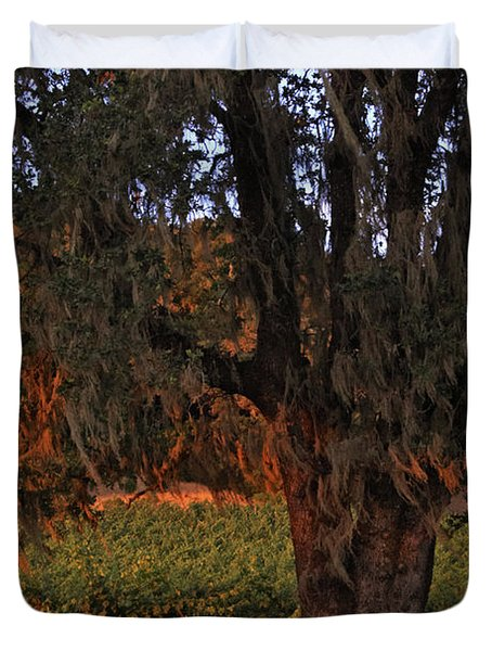 Oak Tree And Vineyards In Knight's Valley Duvet Cover