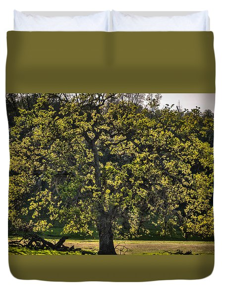 Oak Tree New Green Leaves Duvet Cover