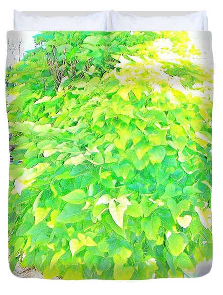 Duvet Cover featuring the photograph Obese American Tree by Lenore Senior