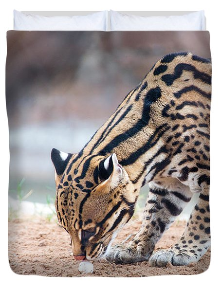 Ocelot And Egg Duvet Cover