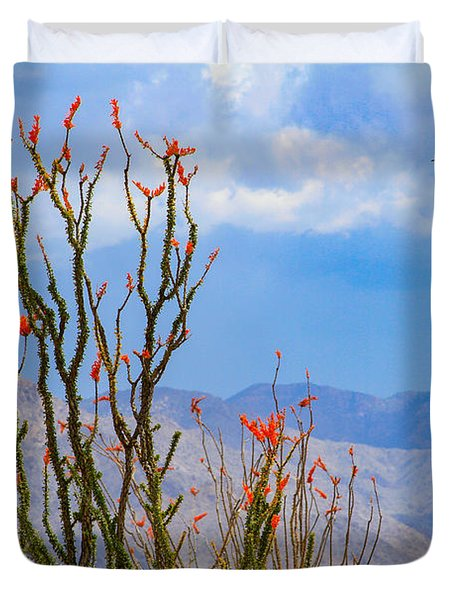 Ocotillo Cactus With Mountains And Sky Duvet Cover