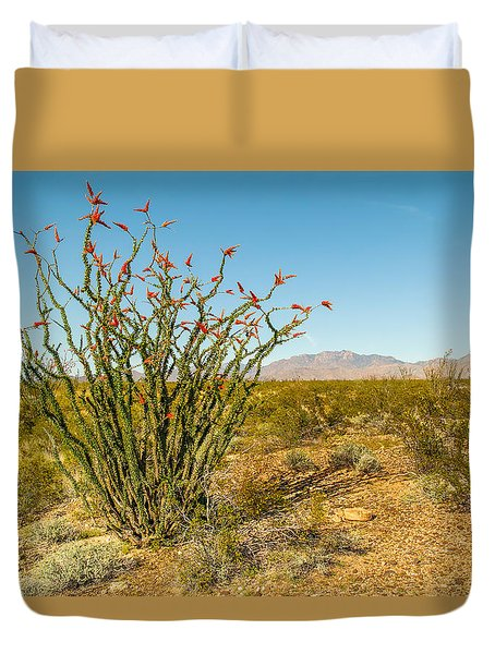 Ocotillo Duvet Cover