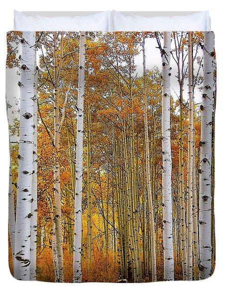 October Aspen Grove  Duvet Cover