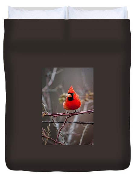 Of Barbs And Thorns Duvet Cover