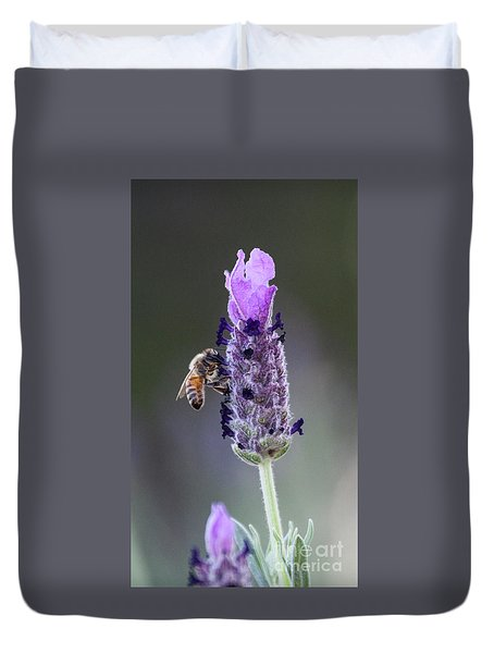 Of Bees And Lavender  Duvet Cover by Ruth Jolly
