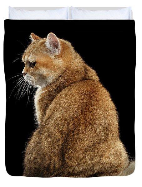 offended British cat Golden color Duvet Cover