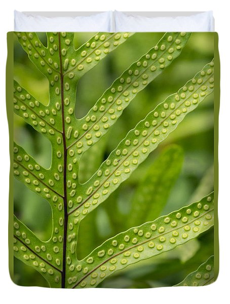 Duvet Cover featuring the photograph Oh Fern by Christina Lihani