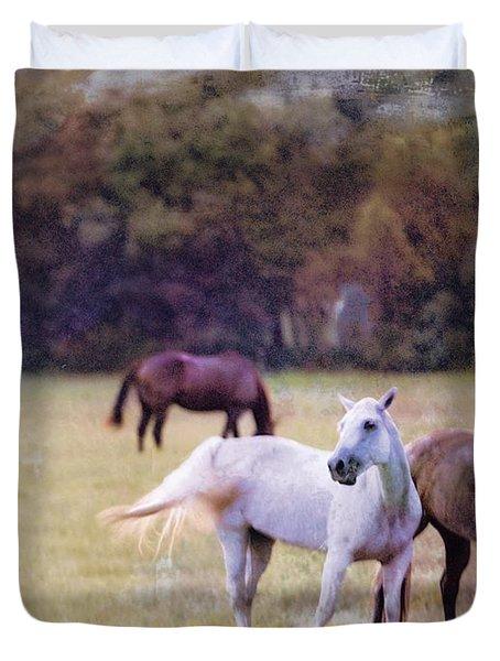 Ok Horse Ranch_1c Duvet Cover