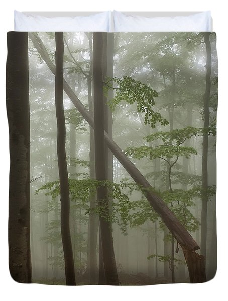 Old Beech Forest Duvet Cover by Evgeni Dinev