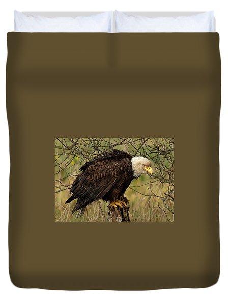 Old Eagle Duvet Cover