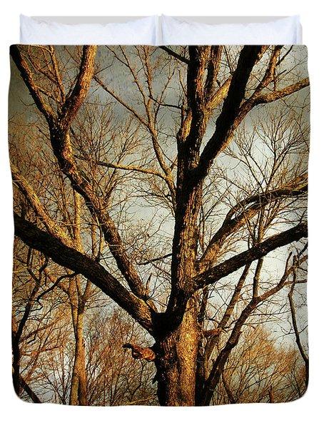 Old Faithful Duvet Cover by Amy Tyler