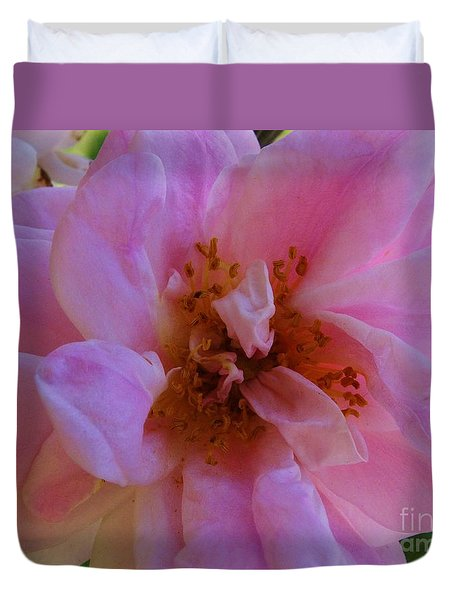 Duvet Cover featuring the photograph Old Fashion Rose by J L Zarek