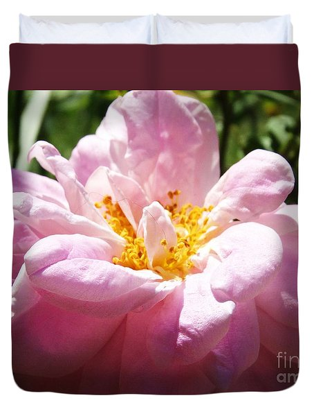 Duvet Cover featuring the photograph Old Fashion Rose Three by J L Zarek