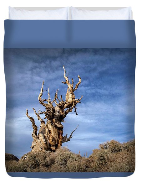 Duvet Cover featuring the photograph Old Friend by Sean Foster